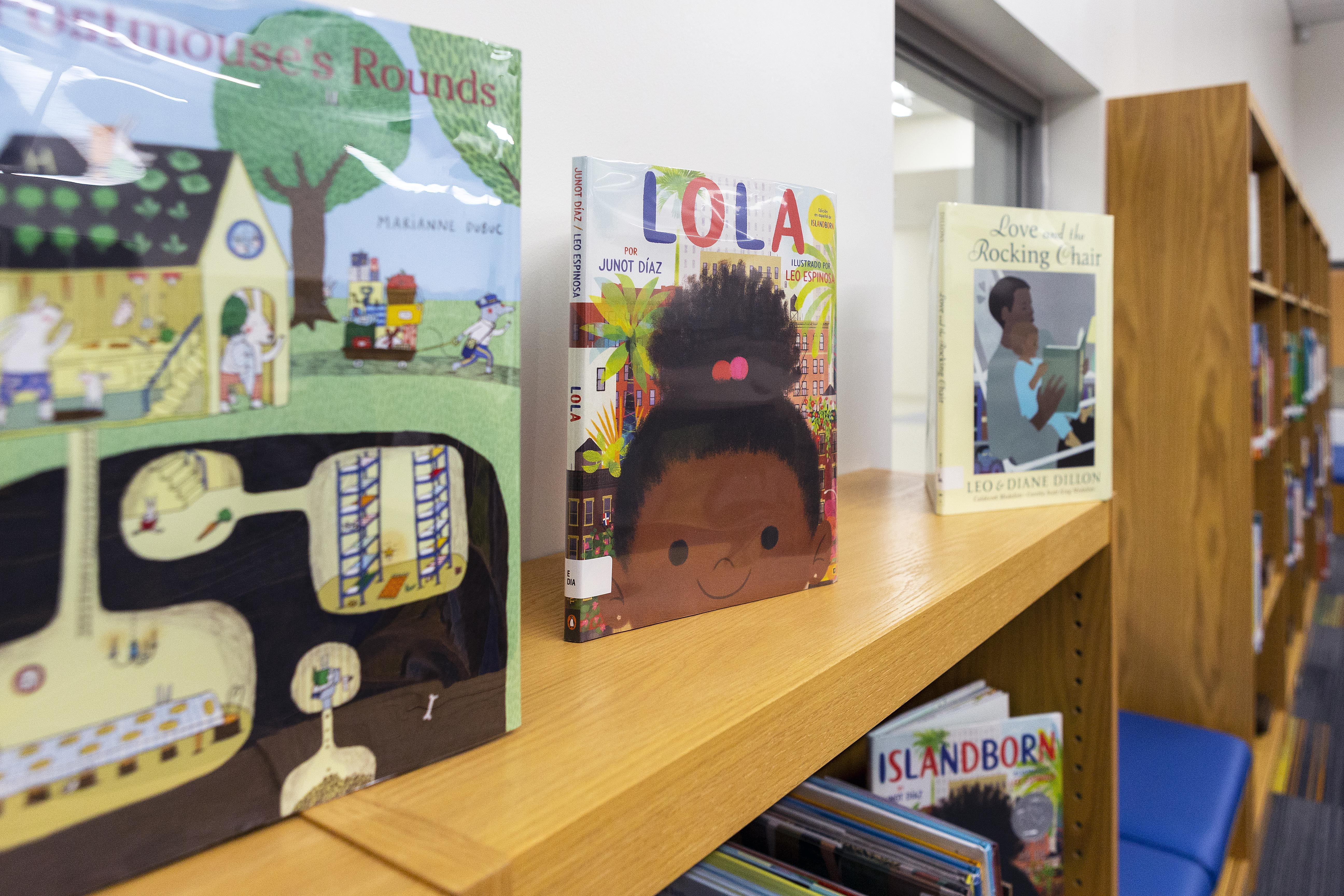 Books in the media center were intentionally selected to reflect the diversity of the student body.
